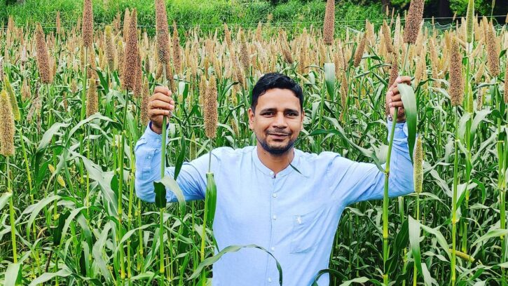 Millets crop of the future