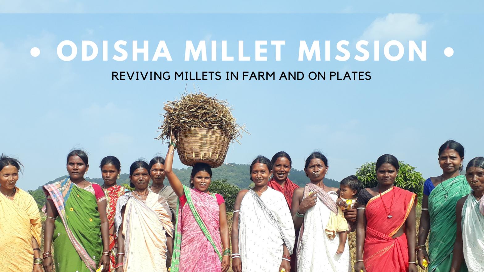 Odisha Millet Mission