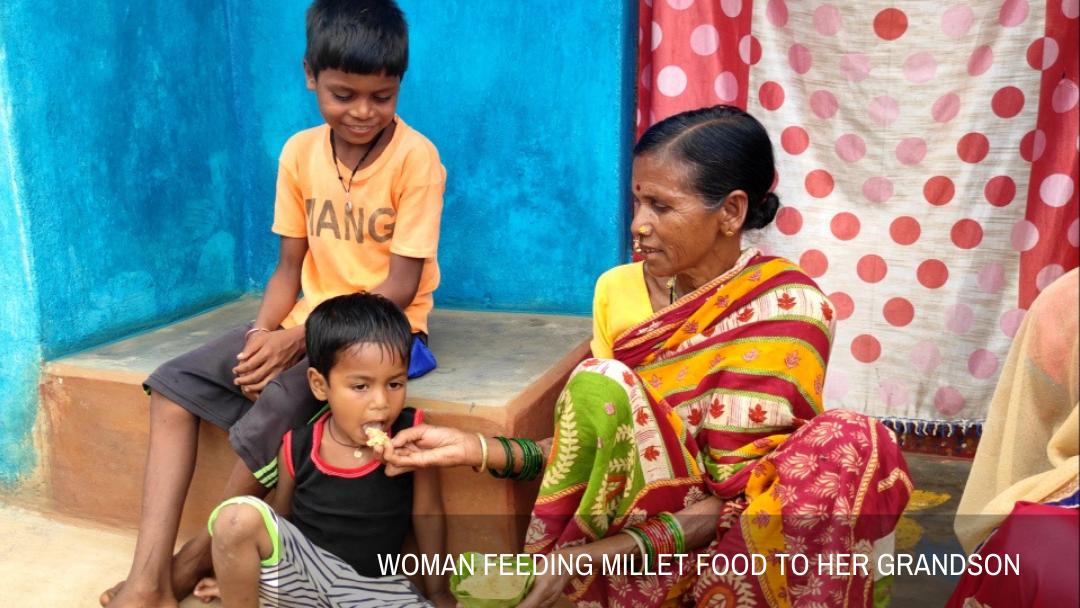 Millet Food Festival